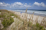 North Carolina's Outer Banks ringed by Sea oats on the sand dunes. Photographic Print by Charles Cecil