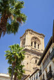Spain, Granada. This is the bell tower of the Granada Cathedral. Photographic Print by Julie Eggers