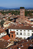 Italy, Lucca, Torre Guinigi, The Tower with Oak Trees on the Top. Photographic Print by Terry Eggers