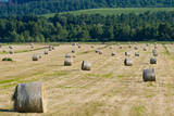 Straw bales in Tuscan field, Val d'Orcia, Siena, Tuscany, Italy. Photographic Print by Nico Tondini