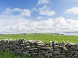 Papa Westray, Orkney islands, Scotland. Photographic Print by Martin Zwick