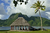 Faleo'o on the shore, Pago Pago, Tutuila Island, American Samoa. Photographic Print by Jerry Ginsberg