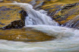 USA, Tennessee, The Little River of the Great Smokey Mountains NP. Photographic Print by Joanne Wells