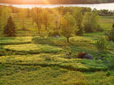 Canada, New Brunswick, Kingston, Shampers Bluff. Sunset over a meadow. Photographic Print by Ellen Anon