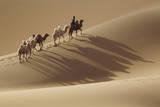Camel caravan, Badain Jaran Desert, Inner Mongolia, China. Photographic Print by Ellen Anon