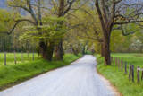 USA, Tennessee, Sparks Lane in Cades Cove in the spring. Photographic Print by Joanne Wells
