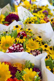 USA, Washington, Seattle, Colorful bouquets at Pike Place Public. Photographic Print by Trish Drury