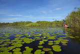 Mokoro being poled though lily pads, Okavango Delta, Botswana, Africa Photographic Print by David Wall
