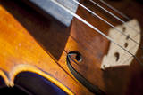 Close-up of violin. Photographic Print by Brian Jannsen
