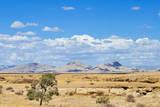 Namib desert, Namibia. Photographic Print by Nico Tondini
