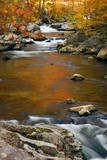 Mountain creek with fall colors, Smoky Mountains, Tennessee Photographic Print by Anna Miller