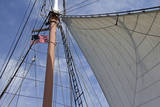 Star of India Sailing Ship, San Diego Maritime Museum, California, USA Photographic Print by Kymri Wilt