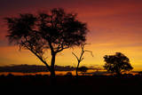 Sunset from Ngweshla Camp, Hwange National Park, Zimbabwe, Africa Photographic Print by David Wall