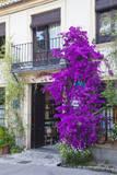 Spain, Granada. The entrance of Hotel America. Fotografisk tryk af Julie Eggers