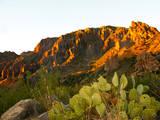 USA, Texas, Big Bend NP, Chisos Mountains, Sunset on Pulliam Ridge. Photographic Print by Bernard Friel