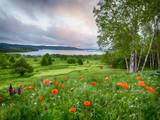 Meadow landscape, Shampers Bluff, Kingston, New Brunswick, Canada Photographic Print by Ellen Anon