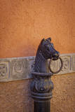 Horse ring, San Miguel de Allende, Guanajuato, Mexico Photographic Print by Don Paulson