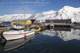 Iceland, Siglufjordur. Boats moored at pier. Photographic Print by Bill Young