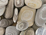 USA, Washington, Seabeck. Close-up of beach stones. Photographic Print by Don Paulson