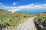 New Zealand, North Island, Cape Reinga, Te Werahi Beach Track Photographic Print by Rob Tilley
