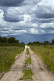 Track from Dobe Border to Nokaneng, and storm clouds, Botswana, Africa Photographic Print by David Wall