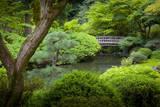 Japanese Garden, Portland, Oregon, USA Fotodruck von Brian Jannsen