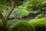 Japanese Garden, Portland, Oregon, USA Photographic Print by Brian Jannsen