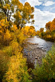 Yampa River in autumn. Photographic Print by Larry Ditto