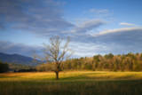 USA, Tennessee, Pasture in Cades Cove. Photographic Print by Joanne Wells