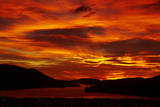 Sunrise, Otago Harbor, Dunedin, South Island, New Zealand Photographic Print by David Wall