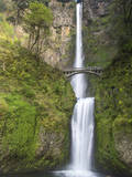 Multnomah Falls, Columbia Gorge National Scenic Area, Oregon, USA Stampa fotografica di Chuck Haney