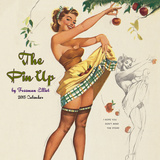 Pin Up by Freeman Elliot - 2015 Calendar Calendars