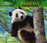 Pandas - 2015 Calendar Calendars