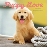Puppy Love - 2015 Calendar Calendarios