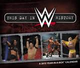 WWE - 2015 Boxed Calendar Calendars