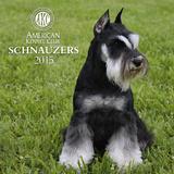 Schnauzers - 2015 Calendar Calendars