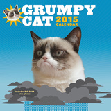 Grumpy Cat - 2015 Calendar Calendars