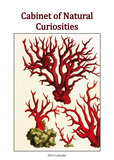 Cabinet of Natural Curiosities - 2015 Poster Calendar Calendars