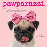 Pawparazzi - 2015 Calendar Calendars