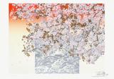 Toshimitsu Imai - Olympic Limitovaná edice