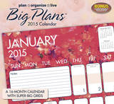 Plan, Organize, Live-Big Plans - 2015 Calendar Calendars