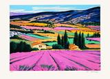 Provence : champs de lavandes Edition limitée par Jean Claude Quilici