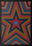 Five Pointed Star with Color Bands Edição limitada por Sol Lewitt