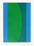 Couleur bleu vert Edição limitada por Jo Delahaut