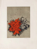 Fleurs rouges Collectable Print by Yannick Ballif