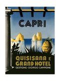 Capri Travel Poster Art