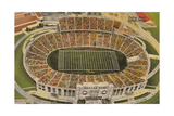 Overview of the Cotton Bowl, Dallas Prints