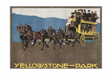 Yellowstone Horse-Drawn Charabanc Prints