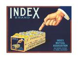 Index Lemon Label Poster