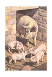 Sow and Piglets Prints
